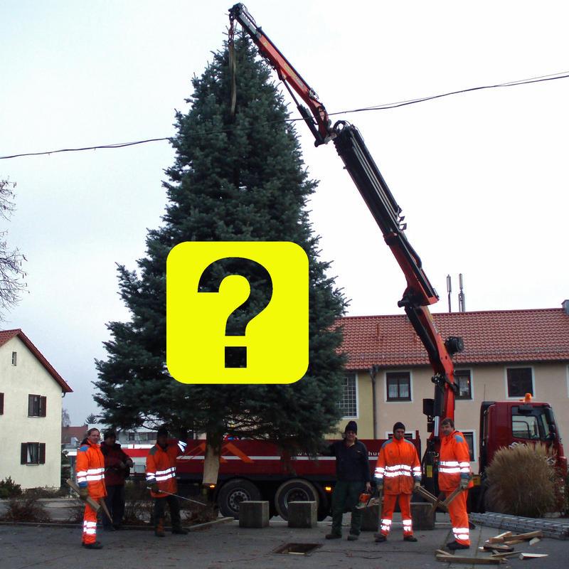 Weihnachtsbaum Service.Weihnachtsbaum Gesucht Stadt Maxhütte Haidhof